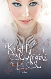 The Knight Angels: Book Of Revenge